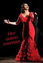 Hoy quiero confesar